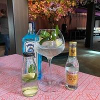 Gin & Tonic Bombay Sapphire 1l
