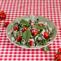 Italiaanse salade large