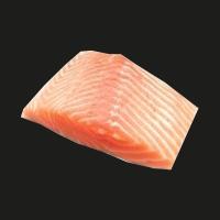 Zalmfilet (per 100 gram)